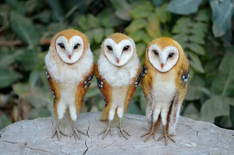 Needle felted Barn Owls by Guillermo Molina at Harthicune.