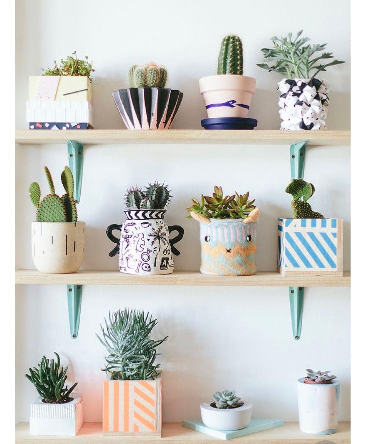 Pin Do A Barbara Pinto Rubio Em Aly S Room Nature Pinterest  ~ Enfeites Para Prateleiras De Quarto