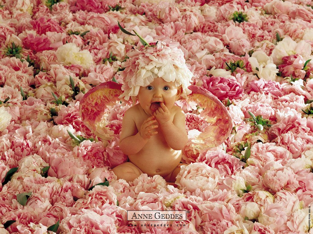 Flowers pictures cute baby in flowers download cute baby in flowers pictures cute baby in flowers download cute baby in izmirmasajfo