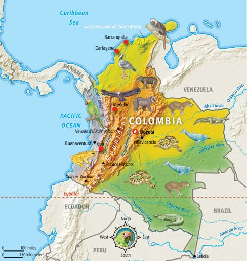 Colombia (country study) by willemmacau - TES Resources
