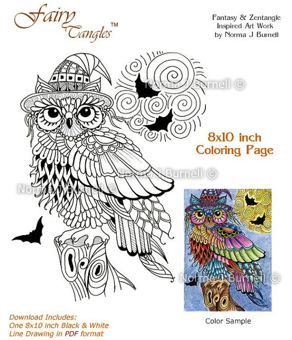 Halloween Trick Or Treat Owl With Full Moon And Bats Fairy Tangles Digital Adult Coloring