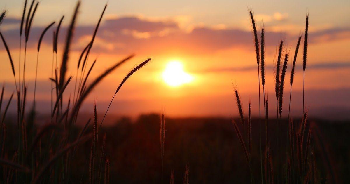 23 Gambar Panorama Alam Senja Gambar Pemandangan Senja Indah Di Mata Gambar Indah Download 5o Lukisan Dan Di 2020 Pemandangan Fotografi Alam Pemandangan Khayalan