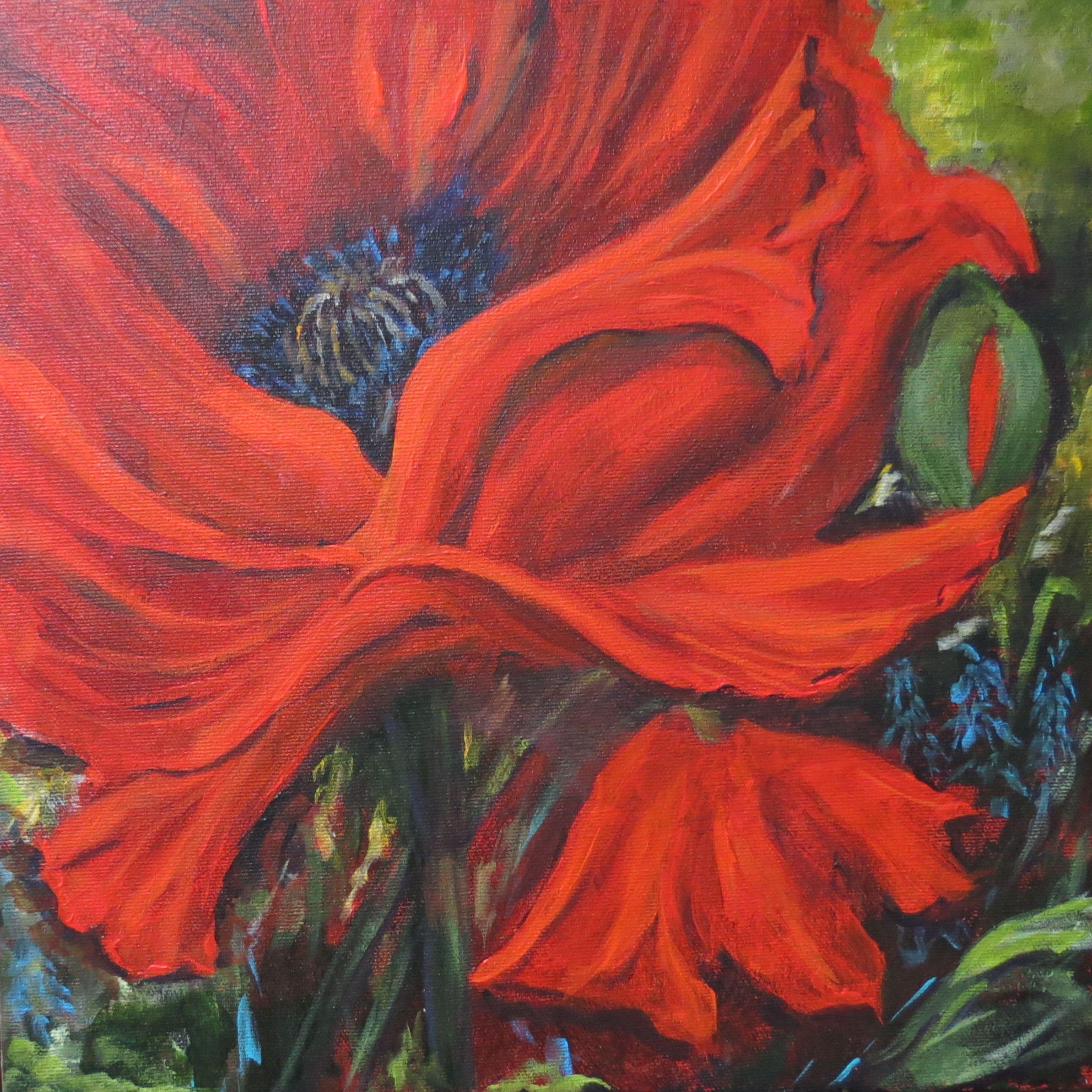 Wild Poppy by Lana Hart
