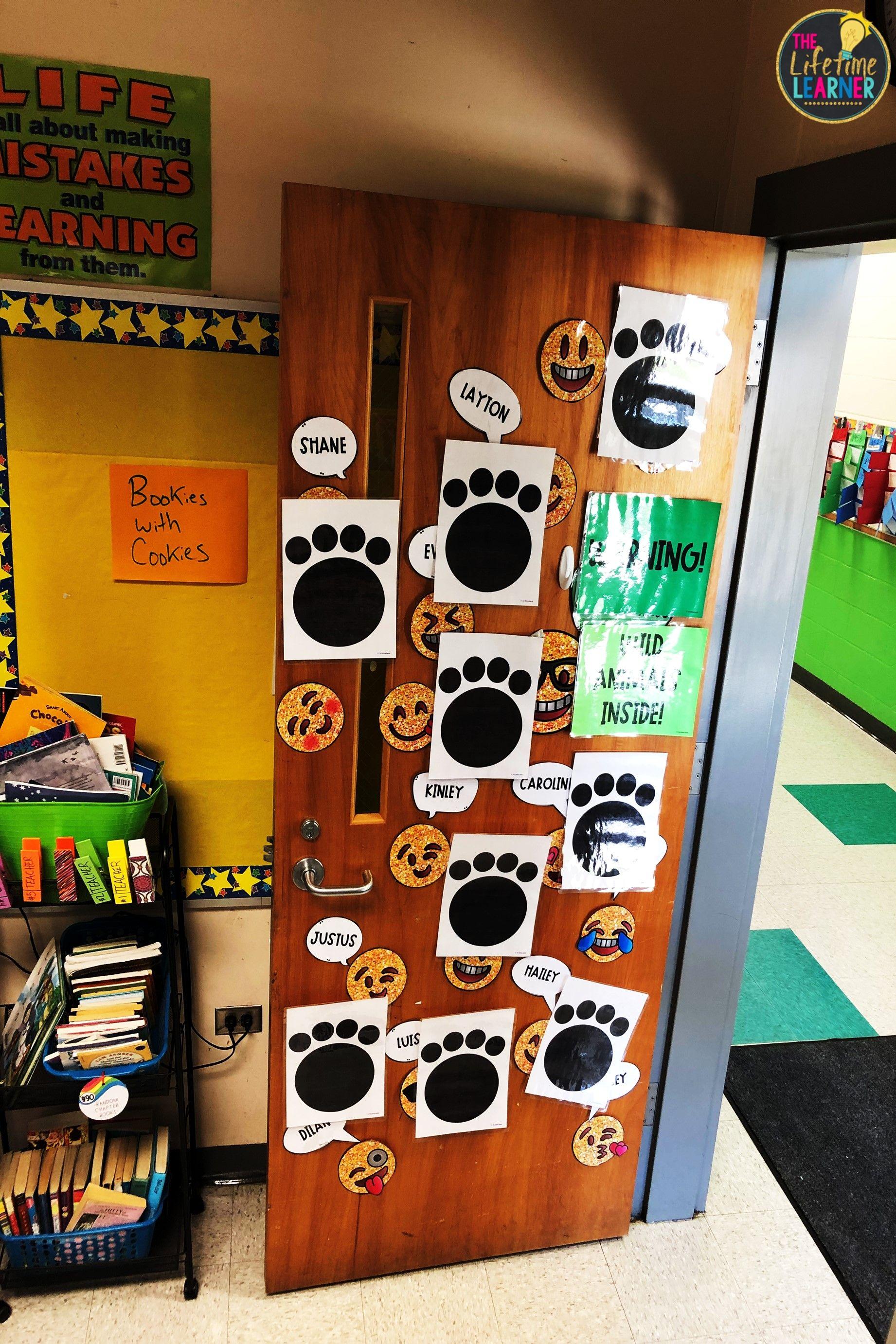 Safari Classroom Transformation