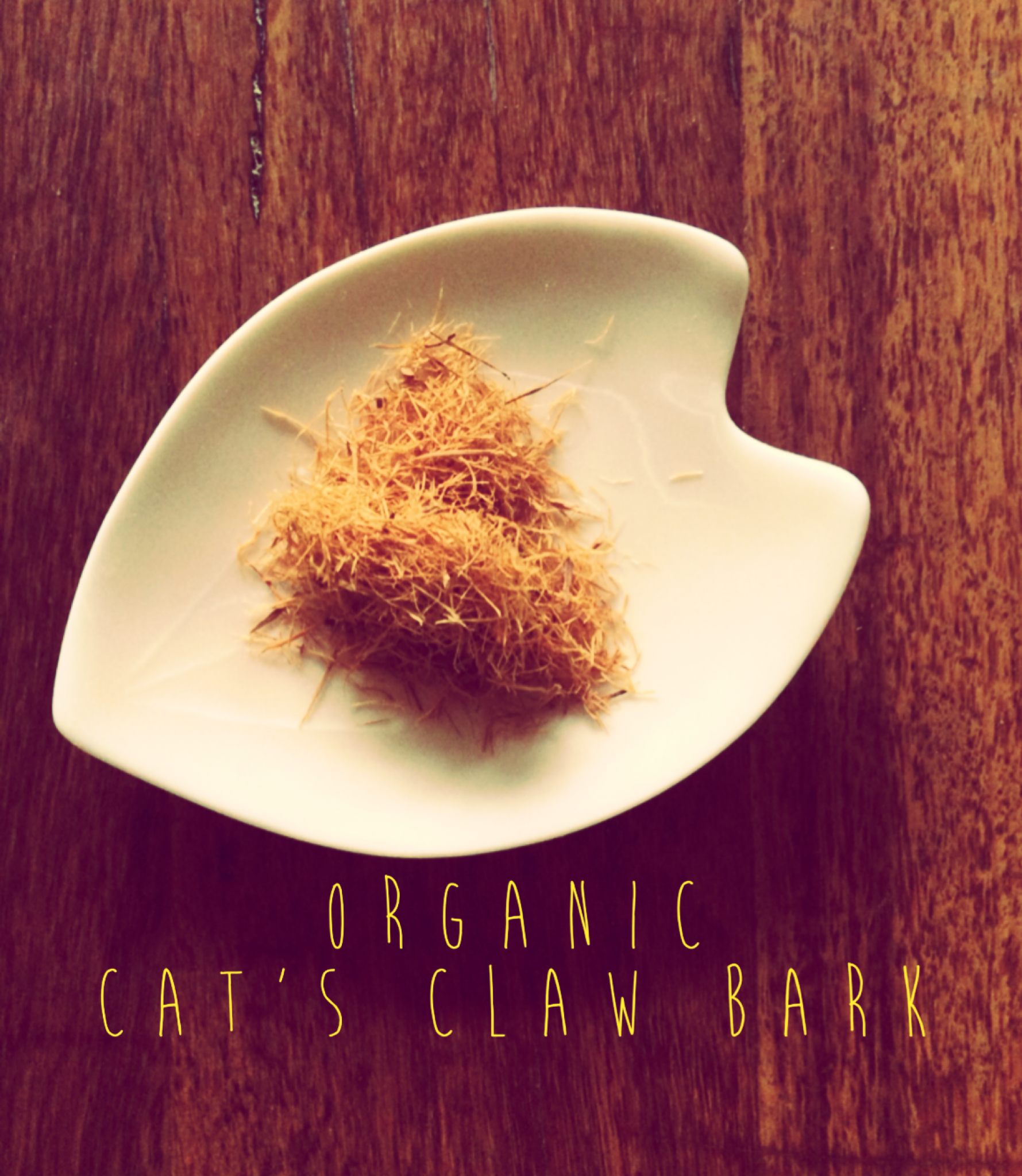 Cat's Claw is an herb that can be very good for pains