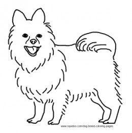 Pomeranian Coloring Coloring for Kids Pinterest Adult coloring