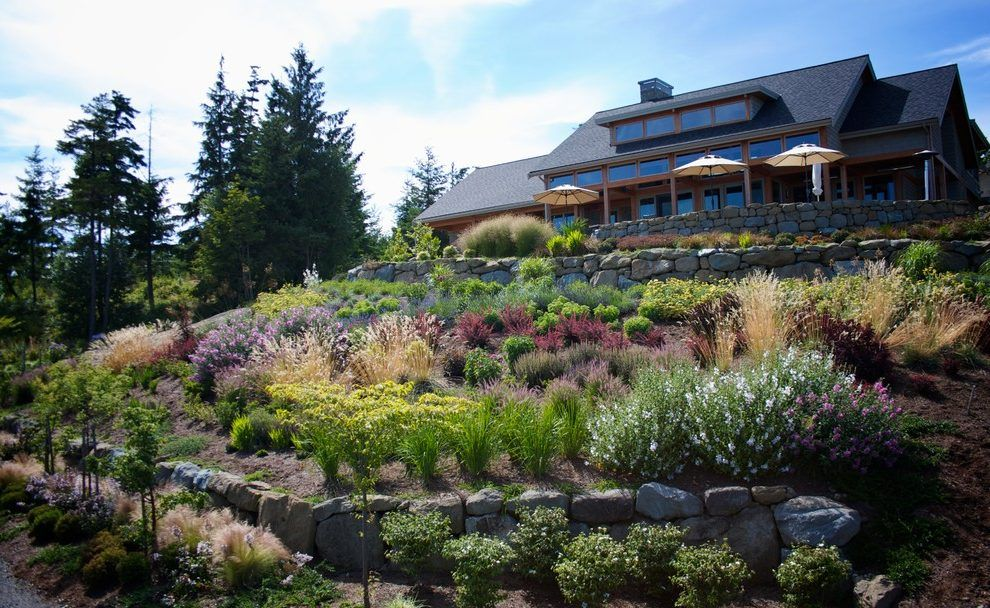 Image result for san diego hillside landscaping (With ...