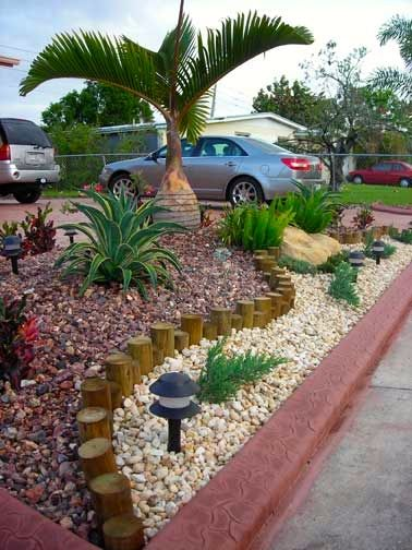 No Maintenance Landscaping Florida Google Search Papa And Ona S