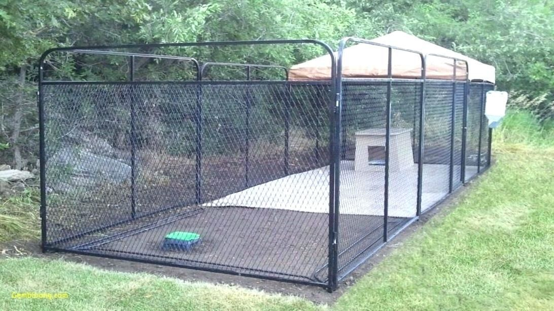 Outdoor Dog Kennel Ideas Medium Size Of Dog Kennel Large Outdoor Dog Kennel And Run Dog Kennels Outside Dog Kennel Floorin Outside Dogs Dog Kennel Dog Backyard