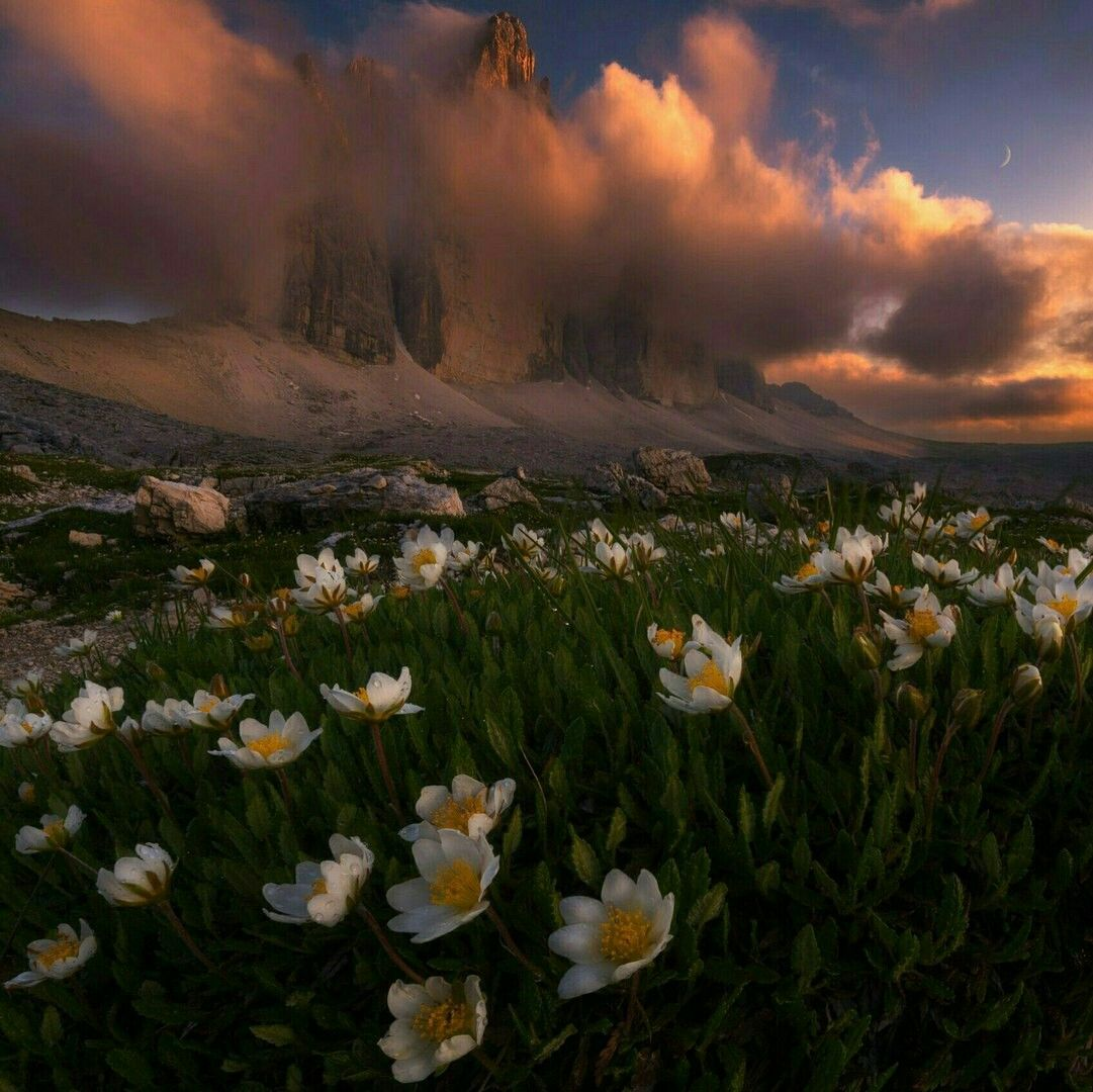 Pin By Halle Noelle On Photos National Geographic Photography Best Landscape Photography Scenery