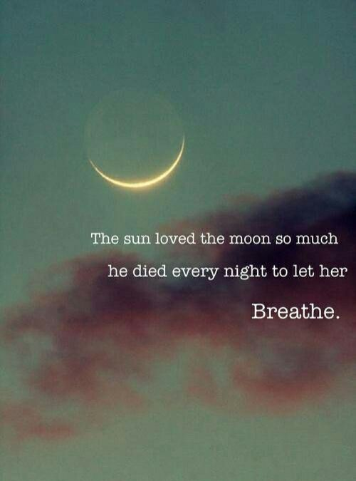 Im Warning You Dont Fall In Love With Me Moonlove Pinterest