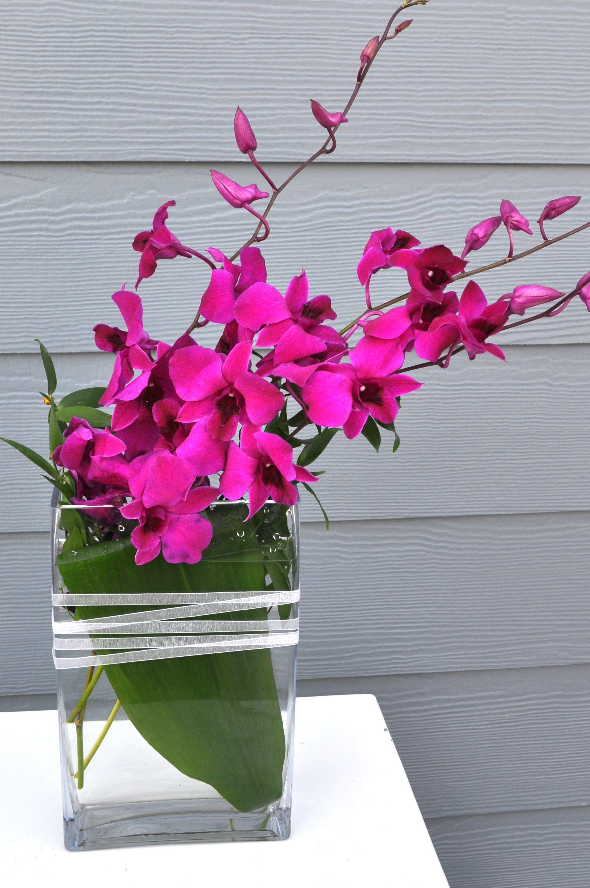 Rectangle Orchid Arrangement Orchid arrangements, Flower