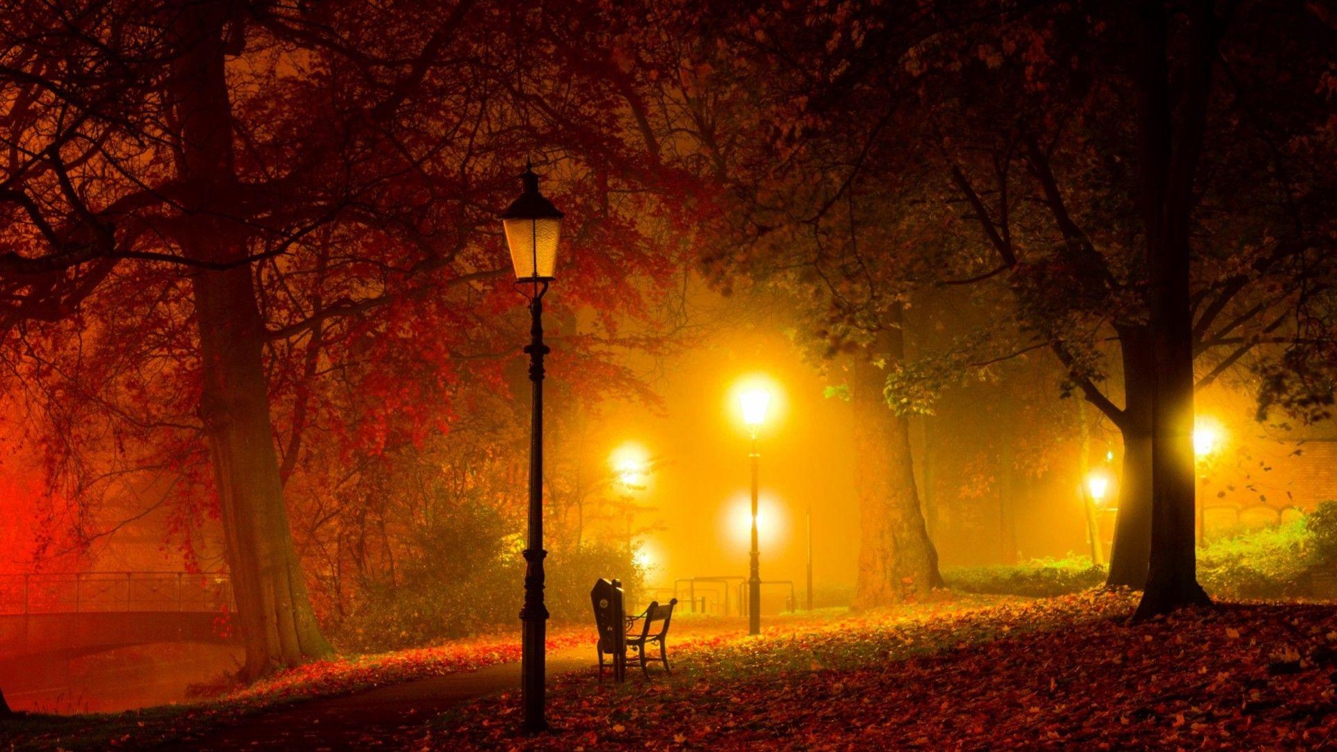 Image result for warm lights image