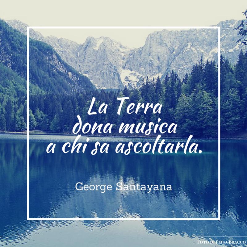 Quote by George Santayana #quotes #quote #aforismi #nature #natura #flowers #citazioni #naturequotes
