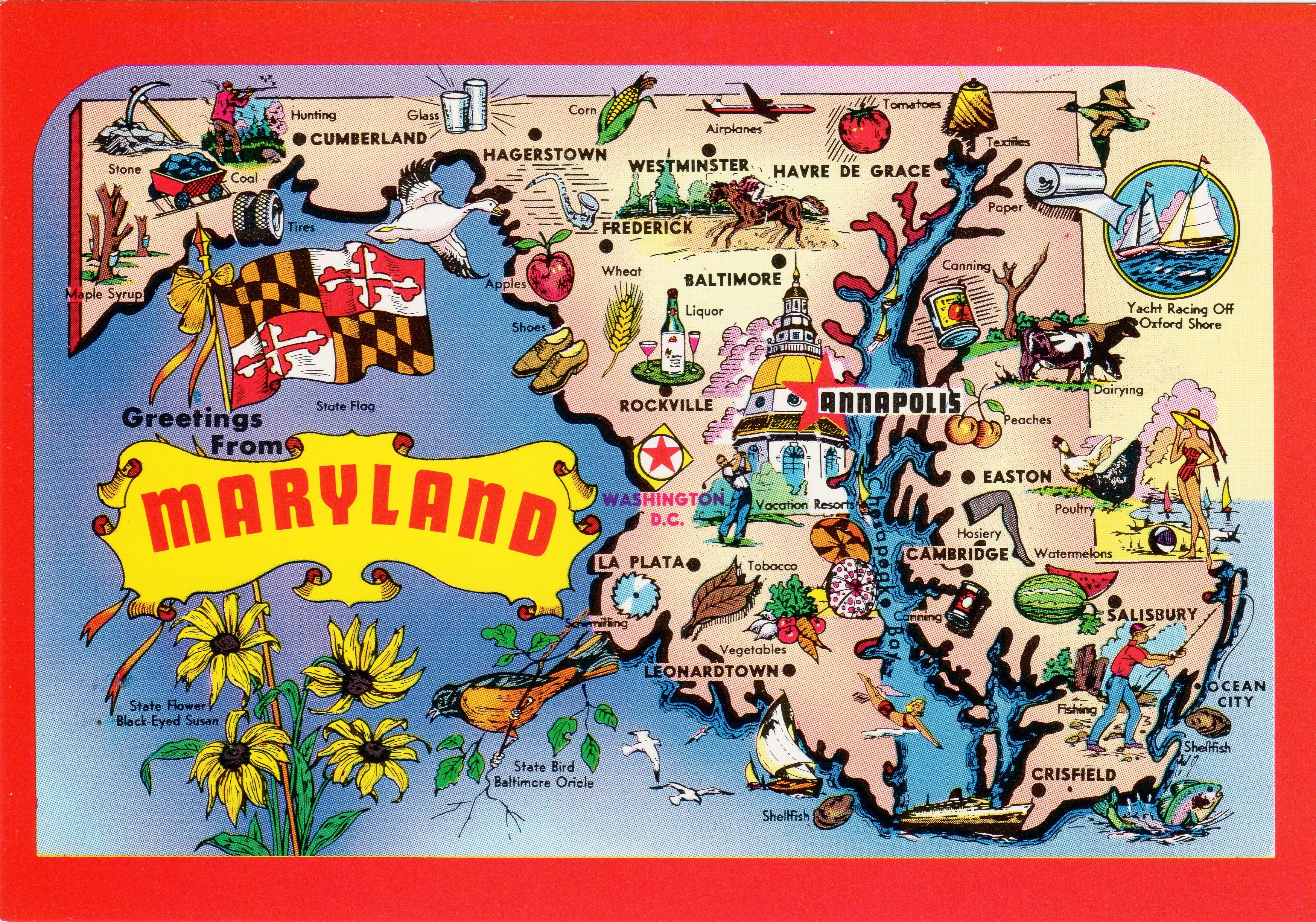 Maryland State Map, entered the Union: April 28th, 1788 | Maryland on maryland government, maryland tourism, baltimore county map, virginia map, maryland coast, maryland capital, maryland natural resources, maryland babes, south of mason dixon line map, south dakota region map, montgomery county map, maryland history, maryland mall, maryland weather, maryland governor, maryland flag, south carolina map, maryland climate, baltimore city map, maryland logo,