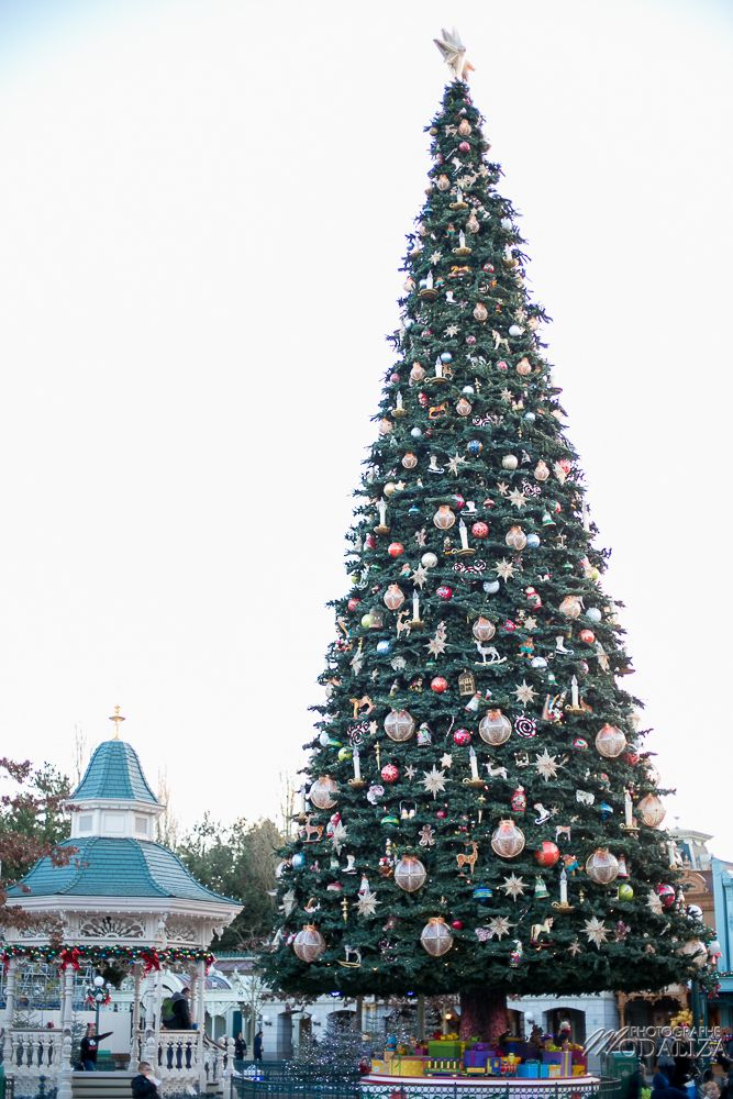 Noel A Disneyland Paris Disneyland Paris Pinterest Disneyland