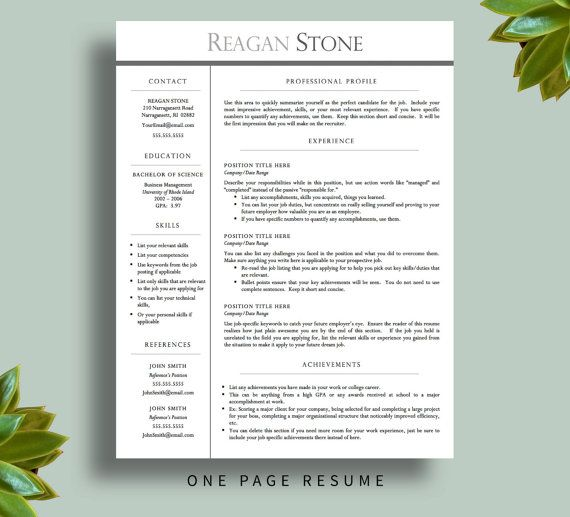 Professional Resume Template for Word AND Pages (1 and 2 Page - free professional resume templates