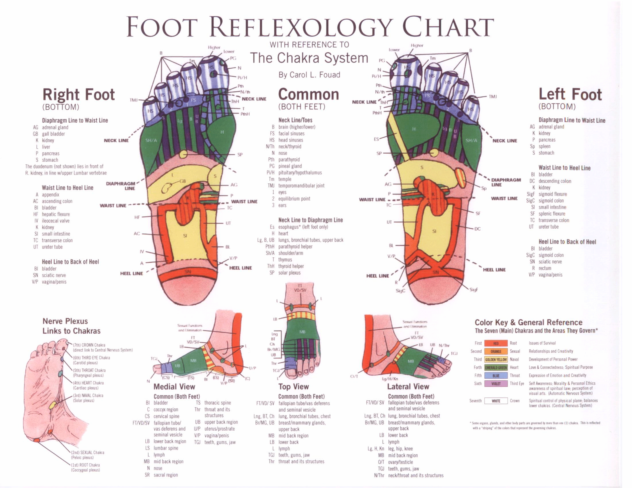 foot reflexology chart with reference to the chakra system [ 2200 x 1700 Pixel ]