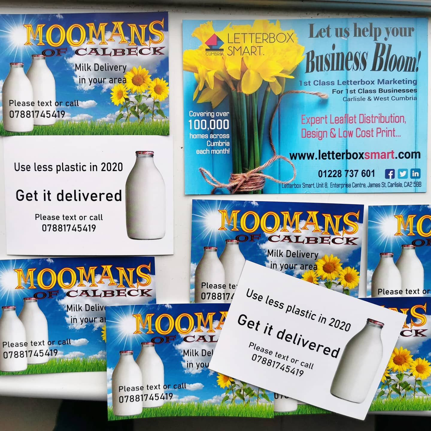 Get It Delivered Fresh Milk From Local Milkman Mooman Of Caldbeck Milk Rounds Available In Wigton Aspatria In 2020 Leaflet Distribution Leaflet Milk Delivery