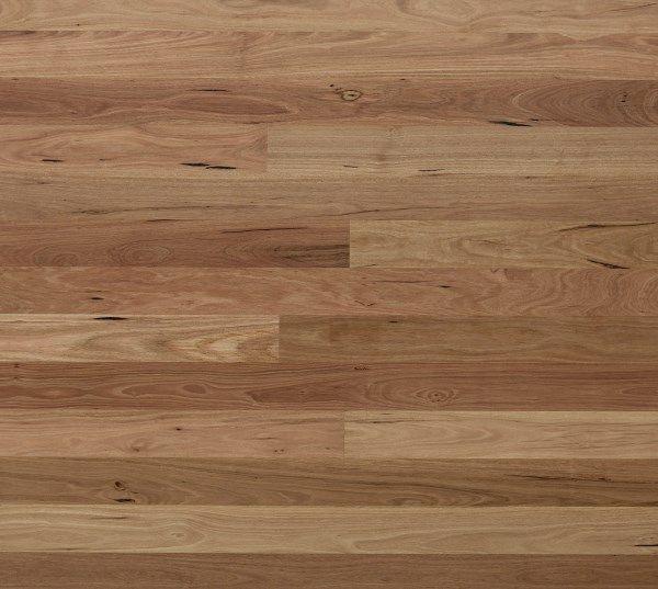 Blackbutt | Materials & Textures | Timber flooring ...