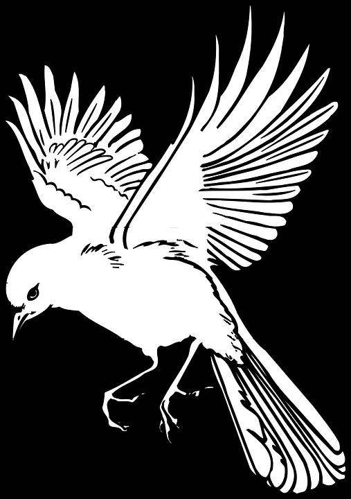 Картинка летящая птица контурная