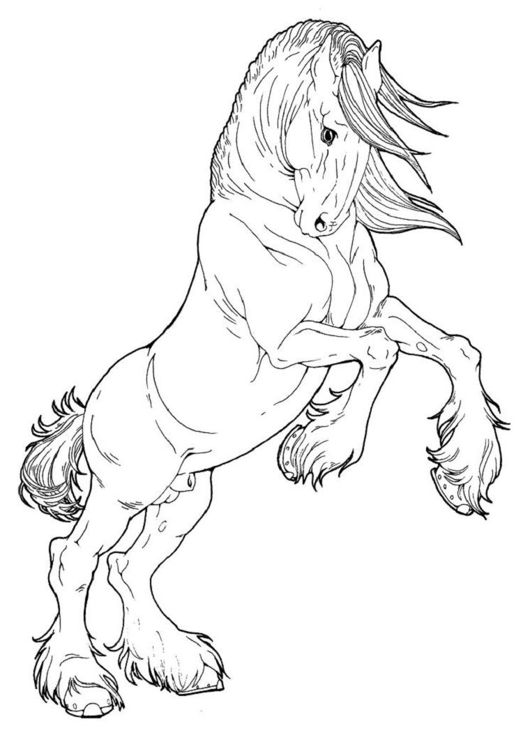 Draft Horse Coloring Pages Horse Coloring Pages Horse Coloring Clydesdale Horses [ 1064 x 750 Pixel ]