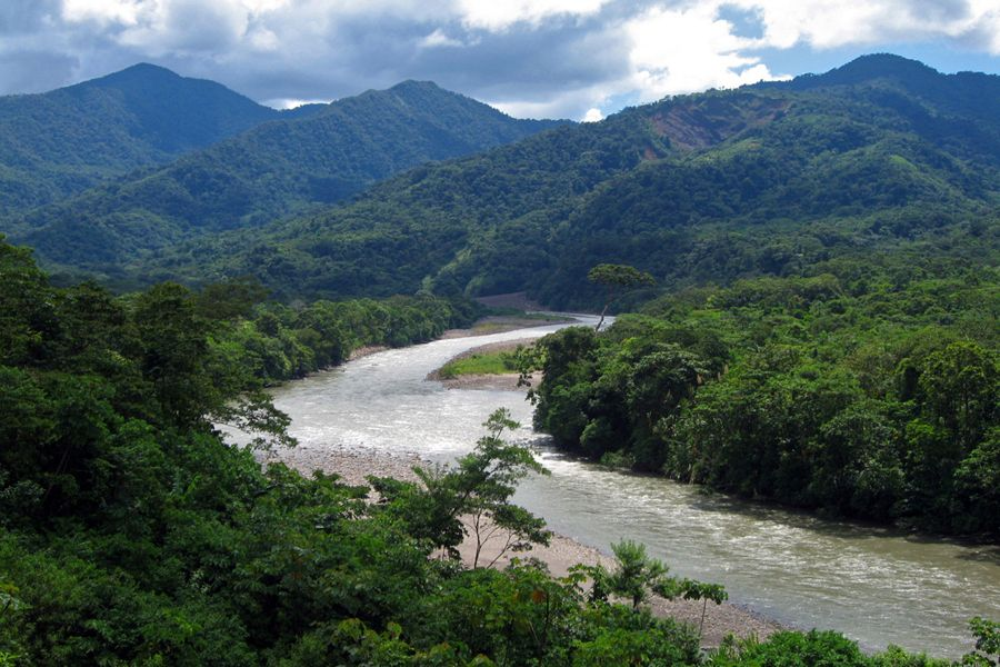 Esto es el nacional parque de Carrasco. La visión es fantástico. Tú ves mucho animales y natural. Tú puedes hacer senderismo, tambien.