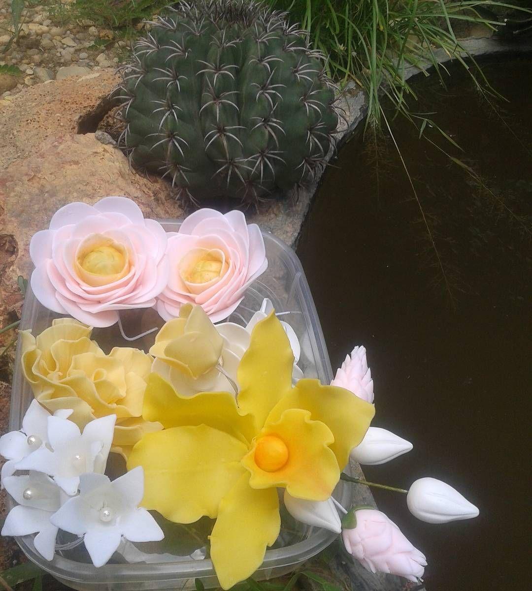 Flores e mais flores... #floresdebiscuit #flores #Teresina