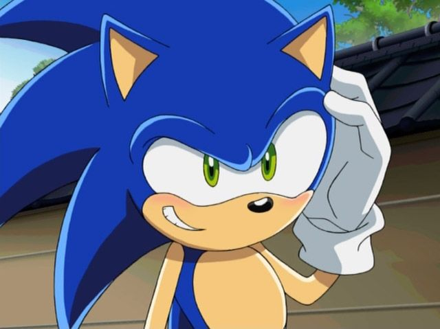 Sonic The Hedgehog Sonic X Gallery Sonic News Network The Sonic Wiki Sonic The Hedgehog Sonic Sonic El Erizo