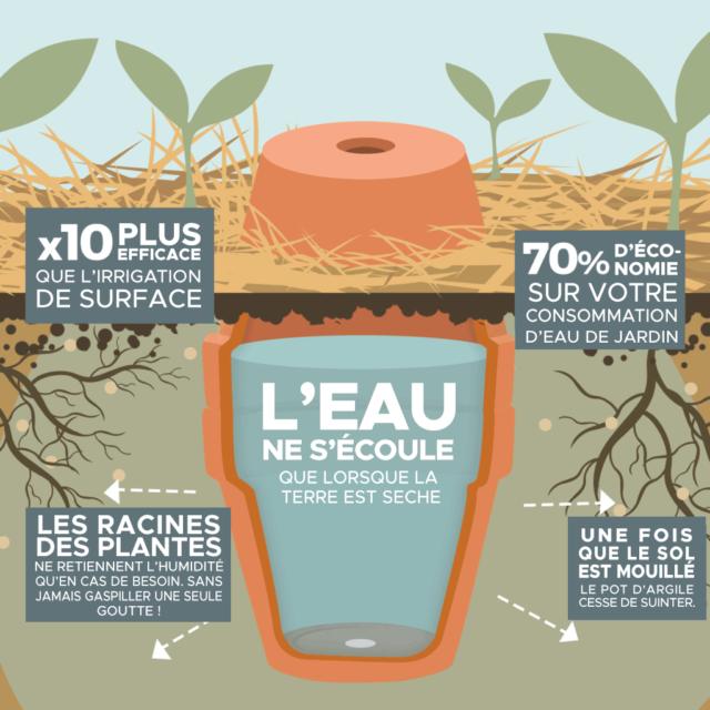 Comment Rendre Votre Jardin Resistant A La Secheresse Arrosage