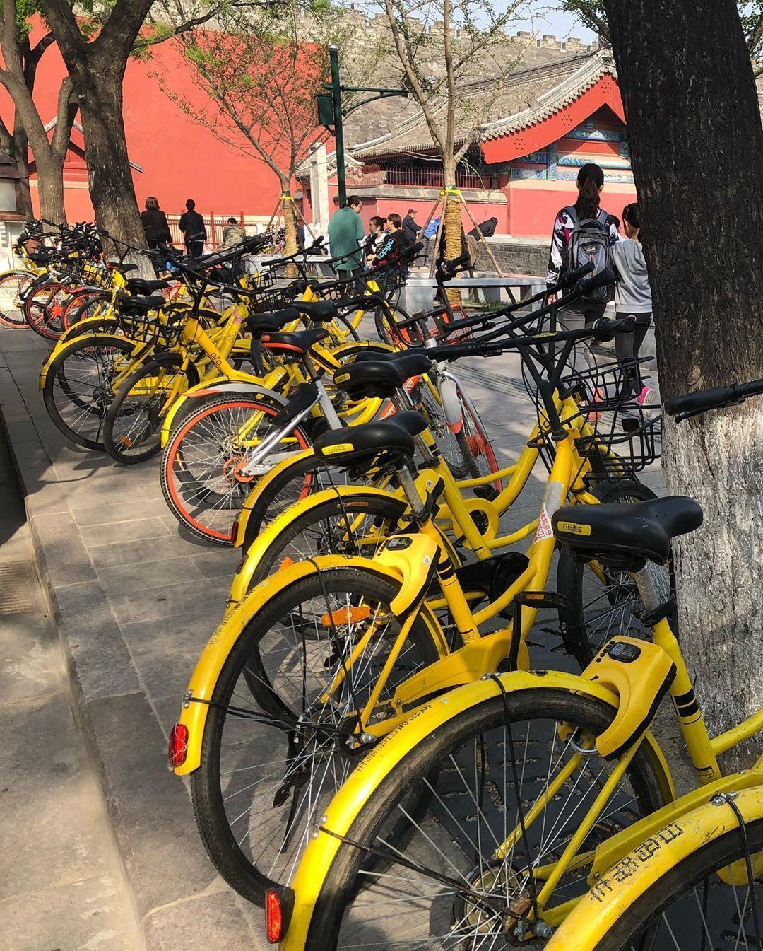 Take me back  Yellow heaven  #china #travel #beijing #enjoy #enjoylife #happy #adventure  Take me back  Yellow heaven  #china #travel #beijing #enjoy #enjoylife #happy #adventure #adventuretime #yellow #live #freedom #fullofjoy