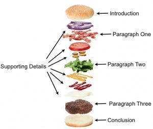 tip of the week hamburger diagram diagram paragraph and th  5 paragraph essay diagram