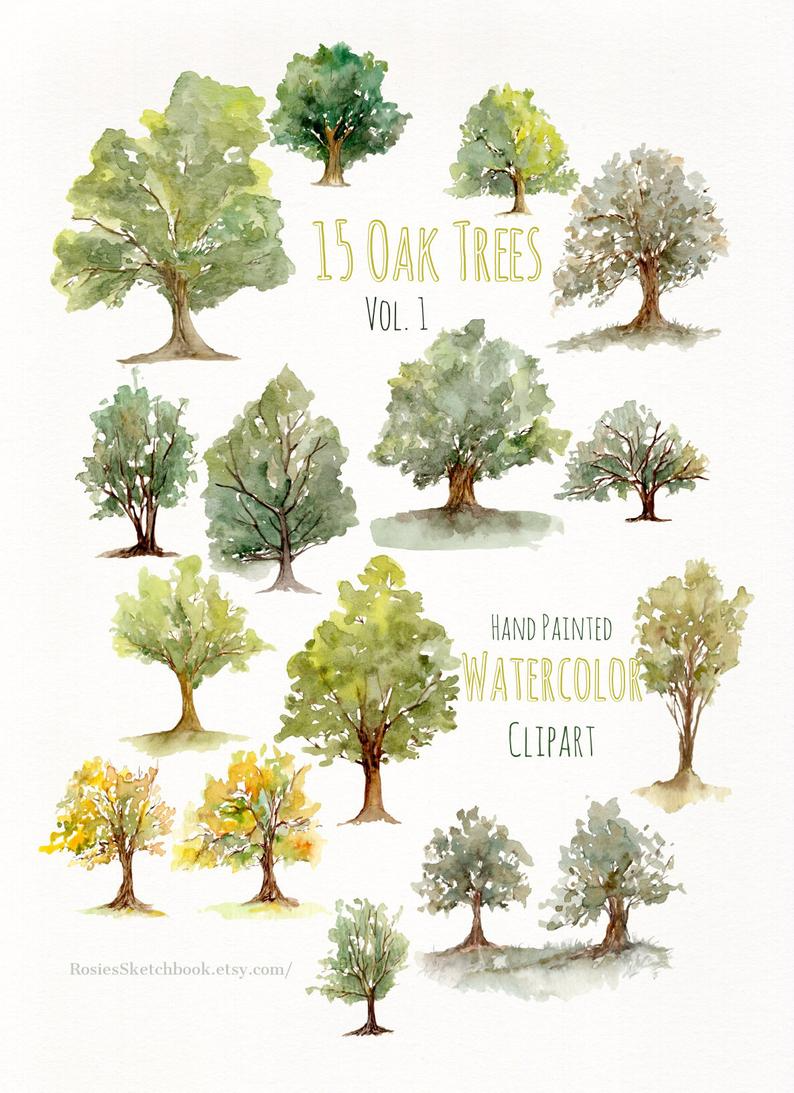 Southern Live Oak Drawing Tree Sketch Png Clipart Art Autumn Tree Black And White Branch Cartoon F In 2021 Live Oak Tree Tattoo Oak Tree Tattoo Tree Roots Tattoo