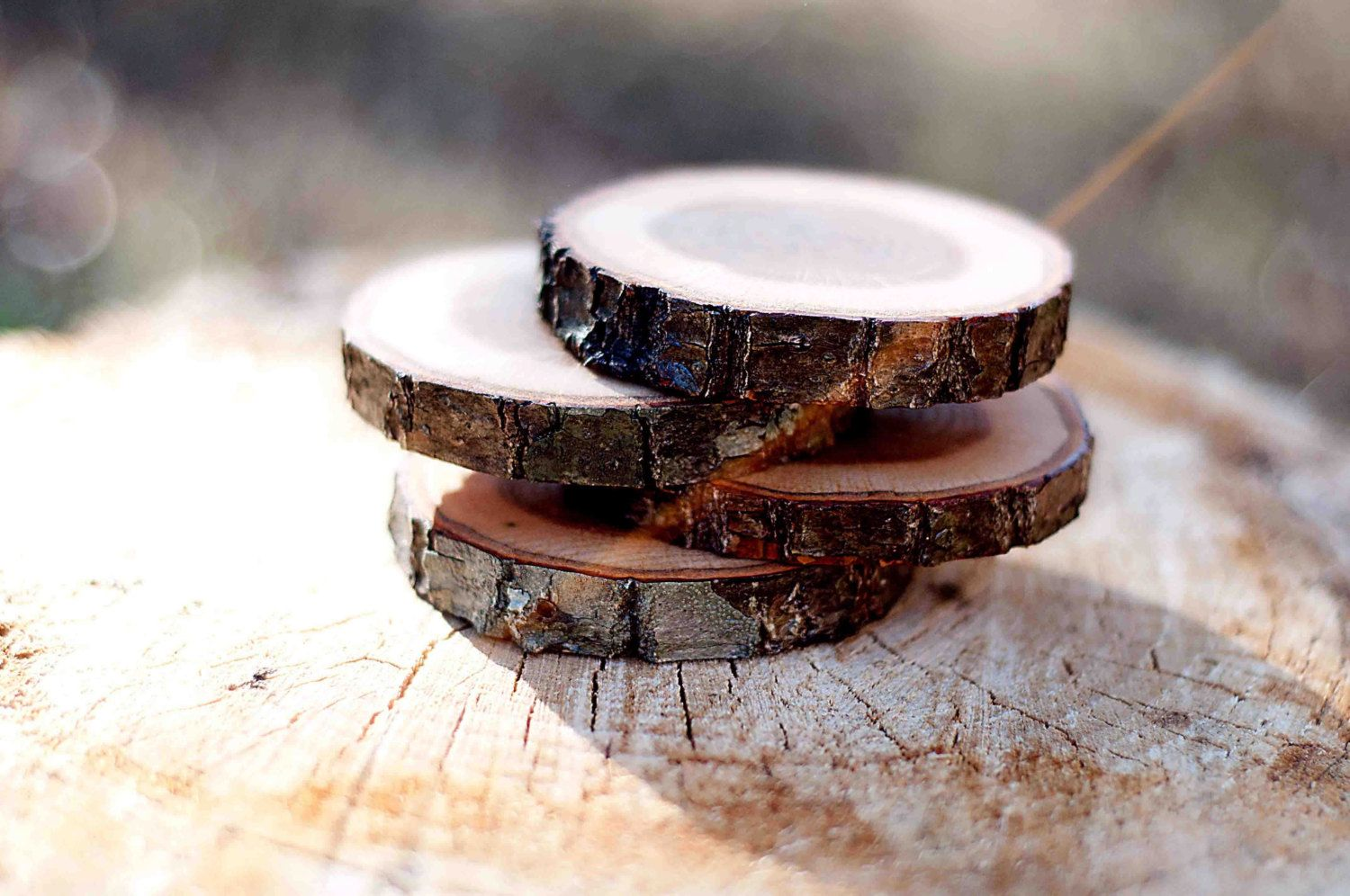 The fallen tree diy diy and gifts pinterest wood coasters