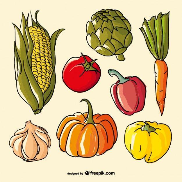 Verduras de colores dibujadas a mano  Imagenes infantiles