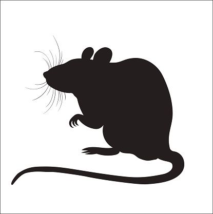 Picture Of Silhouette Of A Rat Vector Art Illustration Rat Silhouette Animal Silhouette Halloween Silhouettes
