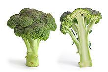 el brócoli-broccoli