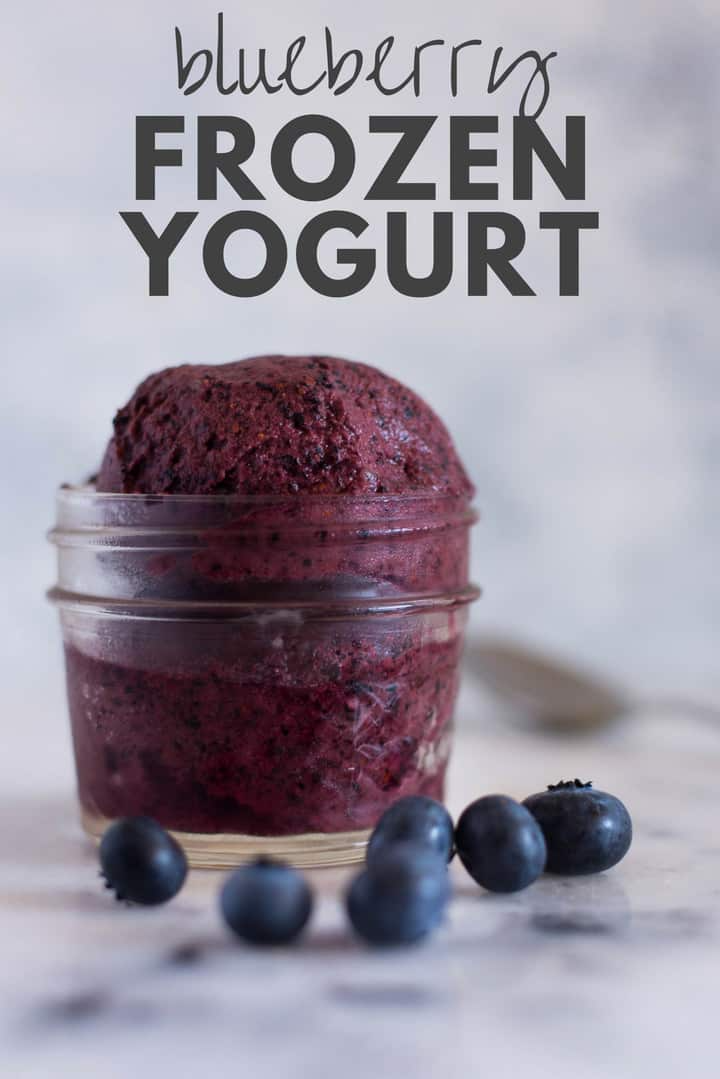 How To Make Frozen Yogurt 4 New Frozen Yogurt Recipes Recipe Frozen Yogurt Recipes Frozen Yogurt Yogurt Recipes