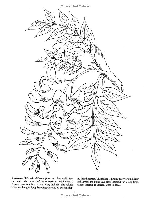 Habitats and Seasons Coloring Pages | 800x600