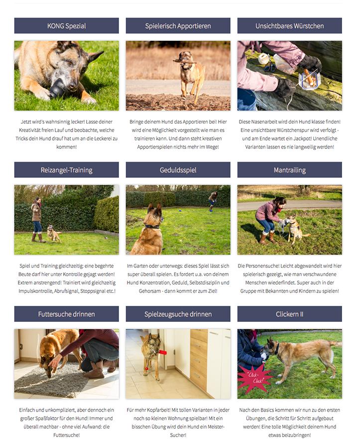 Upsell2 Hunde Spiele nach Webinar Bonuslektionen - Online Hundetraining