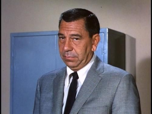 Image result for detective joe friday pictures