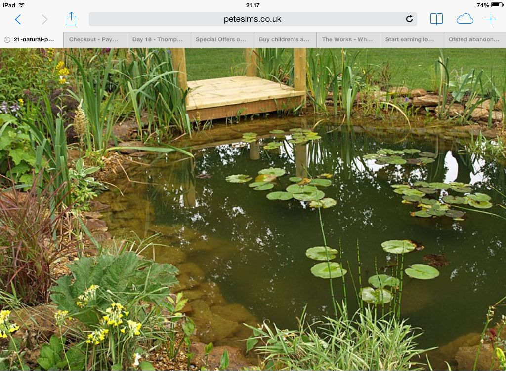 A wildlife pond for my cottage garden ponds pinterest for Garden with a pond