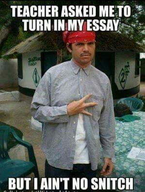 Essay ...