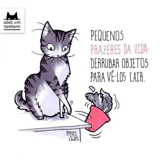 gatos desenho frases - Pesquisa Google