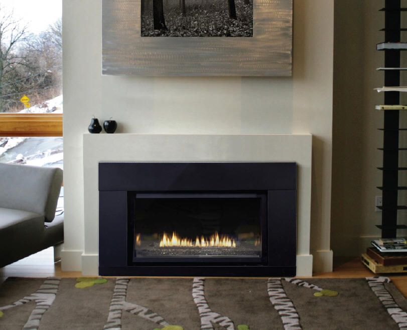 Direct Vent Gas Fireplace Insert Inserts
