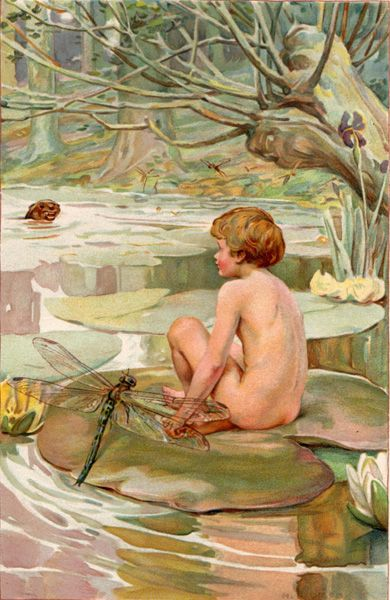 The Water Babies A Fairy Tale For A Land Baby By Arthur Dixon
