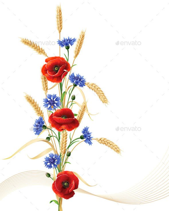 Cornflowers With Poppy Flowers And Wheat By Val Iva Graphicriver