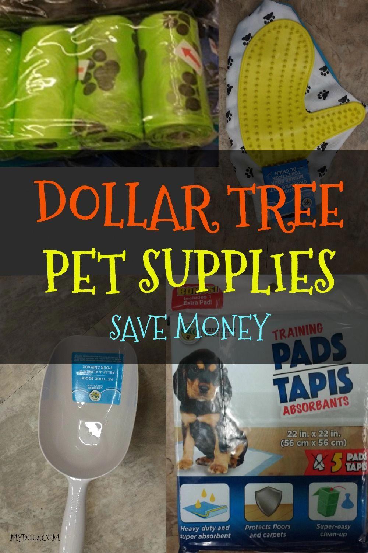 Dog supplies at the dollar tree save money on dog
