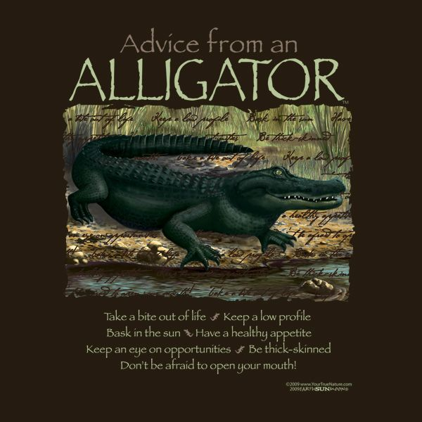 Advise Vs A Between Advice Difference Player Alligators Hookup David