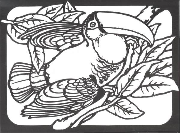 Exotic Bird Coloring Pages Exotic Birds Stained Glass